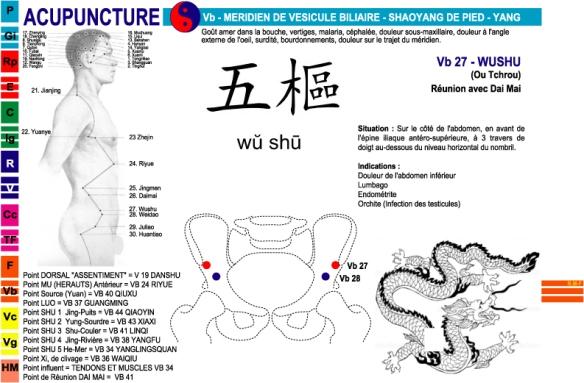 Vb – Méridien de Vésicule biliaire | acuponcture.site